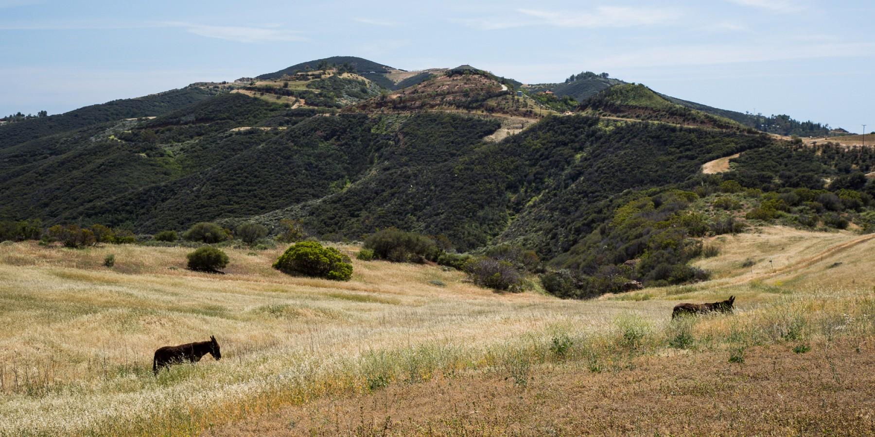 12470 Yerba Buena Road, Malibu, CA 90265